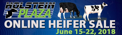 Online Heifer Sale: June 15-22, 2017