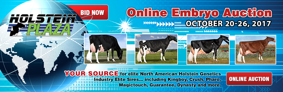 Online Embryo Auction: October 20-26, 2017
