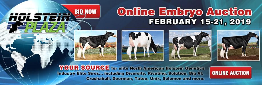 Online Embryo Auction: February 15-21, 2019