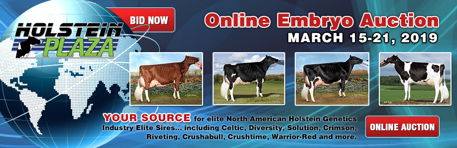 Online Embryo Auction: March 15-21, 2019