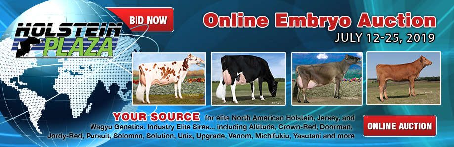 Online Embryo Auction: July 19-25