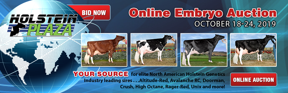 Online Embryo Auction: October 18-24, 2019