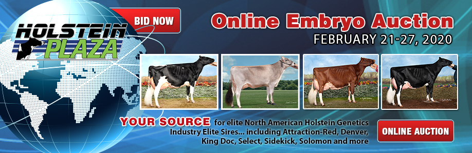 Online Embryo Auction: February 21-27, 2020