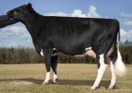 Welcome Billion Wiommi-ET EX-90 EX-MS