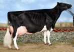 Savage-Leigh Leona-ET EX-96 EX-96-MS