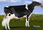 Velthuis SG MOM Alesia VG-87-2YR-CAN
