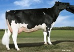 Larcrest Credit VG-85