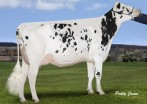 Ms Chassity Snow Carrie VG-88-2YR-CAN