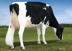 Larcrest Cardigan VG-86-2YR VG-MS