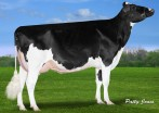 CLAYNOOK DIVINITY UNIX VG-85-2YR-CAN 86-MS