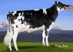 Larcrest Chevelle VG-87-2YR-CAN