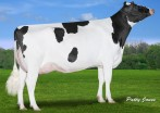Claynook Frankie Silver VG-85-2YR-CAN