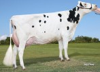 S-S-I Snowman Micro 7670-ET VG-87 DOM