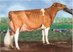 Pamprd-Acres AB Ivy-Red EX-92 92-MS