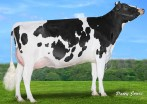 Claynook Fenella Duke VG-87
